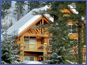 Mountain Vacation Cabin for rent by owner, Winter View